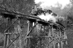 Puffing Billy, Selby Bridge, Dandenongs