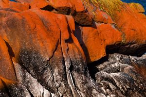 Freycinet Colour